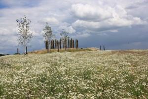 De Palissade in Coevorden zal eens uit de oudheid zijn