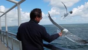Op de boot van Texel